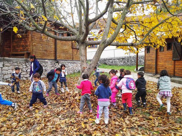 Ein Herbsttag im Kindergarten
